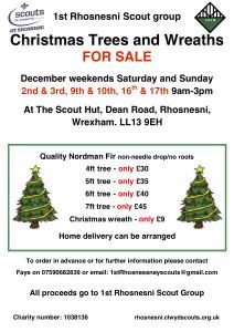 Christmas-Tree-Info-Flyer